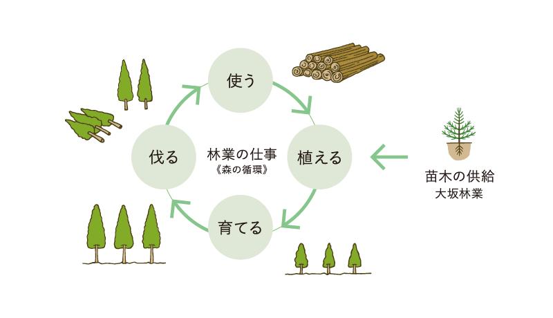 林業の仕事(森の循環)